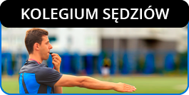 Kolegium Sedziow