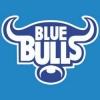Polak w Blue Bulls Tuks Rugby Academy