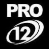 PRO12: Scarlets królami