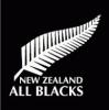Ian Foster trenerem All Blacks